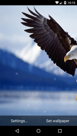 Eagle Live Wallpaper Hd Screenshot 6