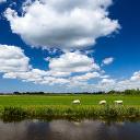 Het Weer in Nederland - Gratis verwachting, radar