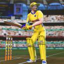 板球世界锦标赛杯 2019: 玩现场游戏