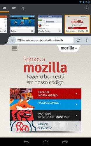 Navegador Firefox screenshot 9