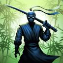 忍者武士:暗影格斗游戏的传奇