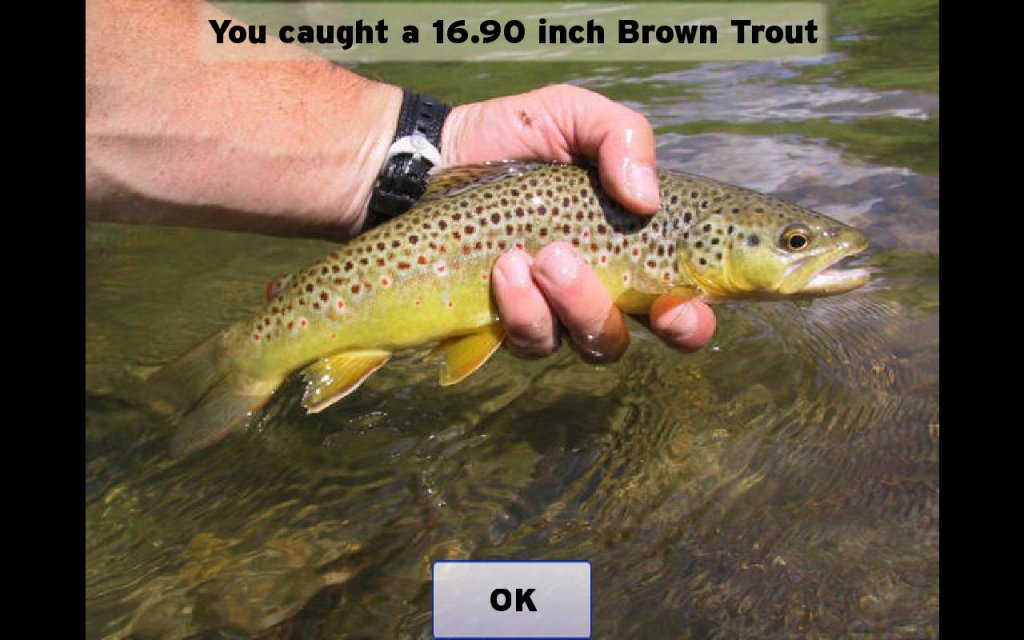 Fly fishing simulator download apk for android aptoide for Fly fishing apps