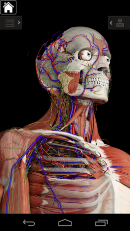 Essential Anatomy 3 1 1 3 7 Download APK for Android - Aptoide