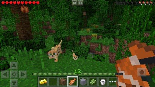 Minecraft: Pocket Edition screenshot 14