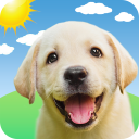 Weather Puppy: Real Time Weather Forecast & Radar