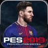 PES 2019 Icon