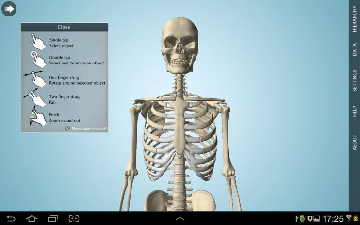 Anatomy 3d Pro Anatronica 207 Download Apk For Android Aptoide