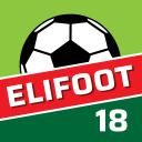 Elifoot 18