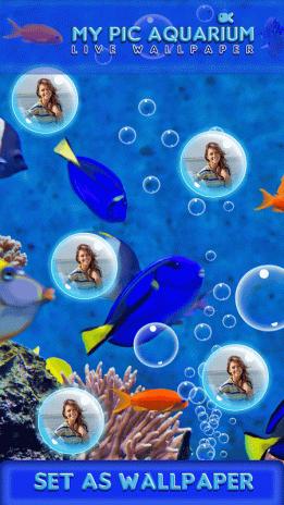 My Pic Aquarium Live Wallpaper 30 Download Apk For Android Aptoide