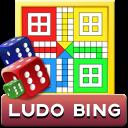 com.lost.king.games.ludo