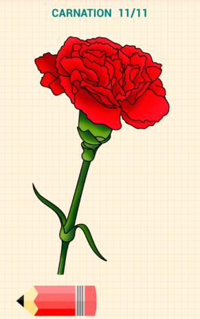 Dessiner Des Fleurs comment dessiner fleurs 4.2 télécharger l'apk pour android - aptoide