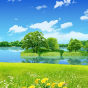 Nature Background Natural Wallpaper