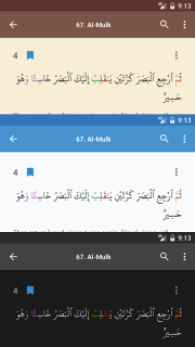 Al Quran (Tafsir & by Word) screenshot 8