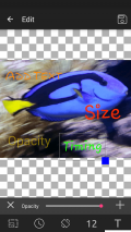 GIF Studio Screenshot