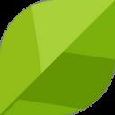 Pollice Verde: Orto