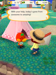 Animal Crossing Pocket Camp screenshot 11