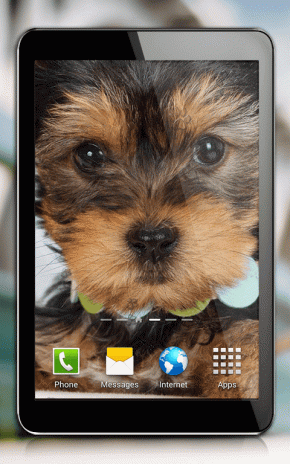Cute Dogs Live Wallpaper Screenshot 6