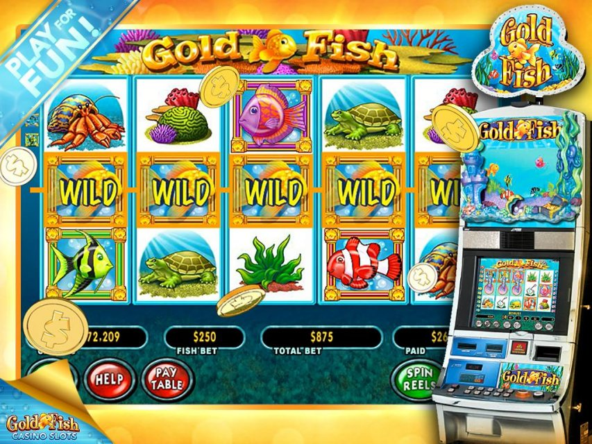 goldfish casino slot