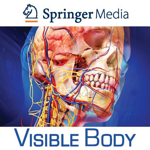 Human Anatomy Atlas - Springer