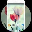 Theme for Huawei P9