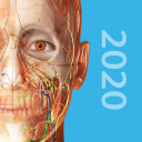 Human Anatomy Atlas 2020:Complete 3D Human Body