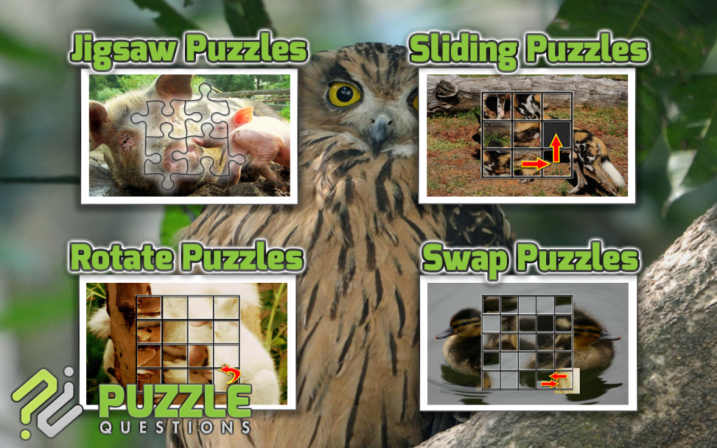 Sudoku, Crossword & Puzzle Games Software -