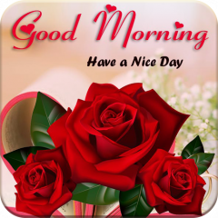 Good Morning Gif 1 2 6 Download APK for Android - Aptoide