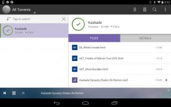 BitTorrent® Pro - Torrent App Screenshot