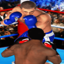 Ultimate Boxing – Fighting Game