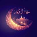 انيس المسلم