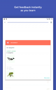 Quizlet: Learn Languages and Vocab with Flashcards screenshot 15