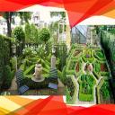 Garden Back Ideas
