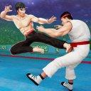 Tag Team Karate Fighting Tiger World Kung fu re