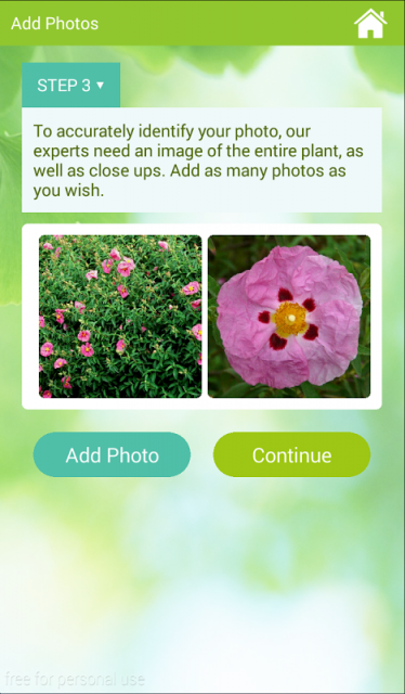 Gardenanswers Download Apk For Android Aptoide