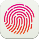 fingerprint test